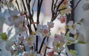Birmingham Wedding Flowers